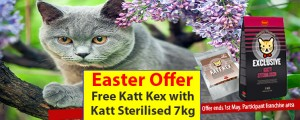 Husse UK Easter offer - cat range